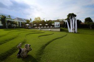 Teracing garden
